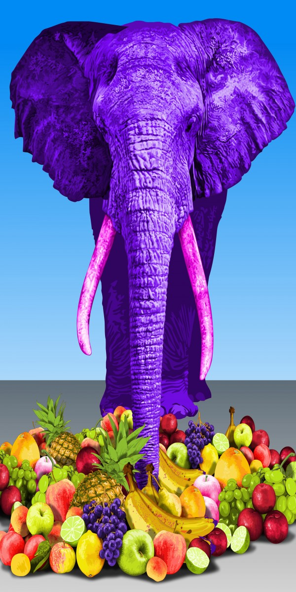animal-series-elephant-mixed-media-60x120cm-2014-e1433756608743